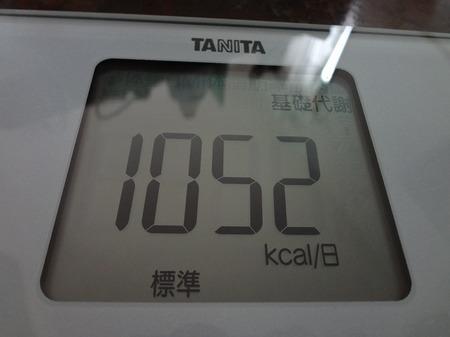 DSC02564.jpg