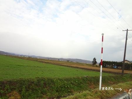 s_DSC03363.JPG